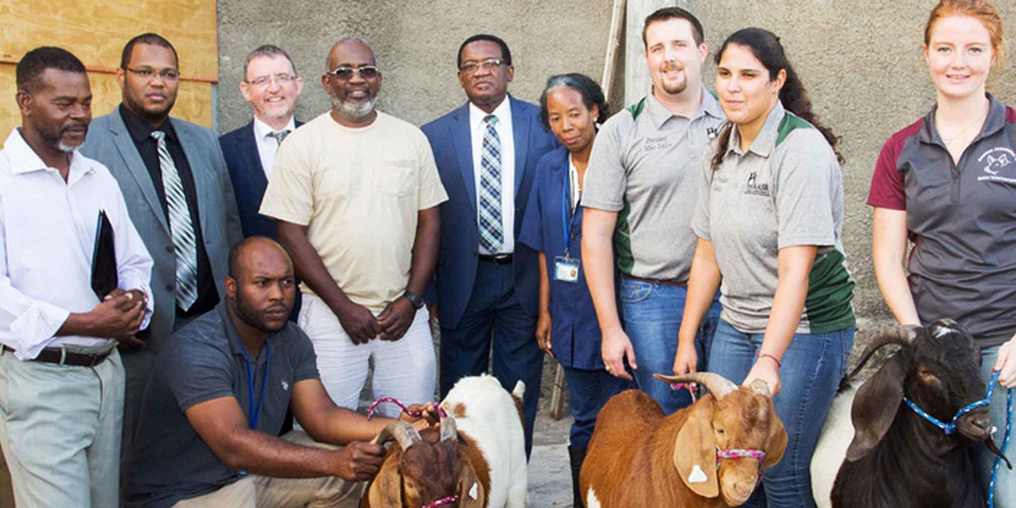 Ross Vet team and partners standing with goats