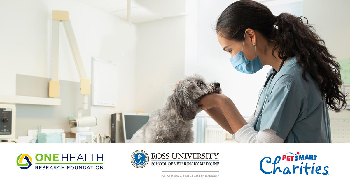 A veterinarian examining a dog over the One Health, Ross University and Petsmart Charities logos
